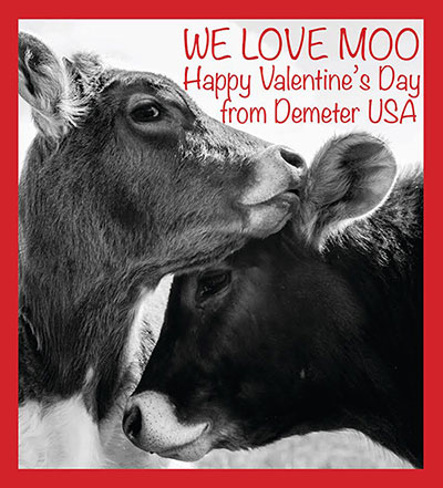 We Love Moo - Happy Valentine's Day from Demeter USA