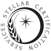 Image result for stellar certification services logo
