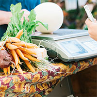 Biodynamic Food in the Marketplace