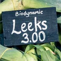 Biodynamic Leeks