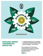 Biodynamic is Regenerative Fact Sheet - Chamomile