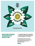 Biodynamic is Regenerative Fact Sheet - Chamomile