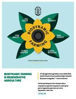 Biodynamic is Regenerative Artwork - Sunflower